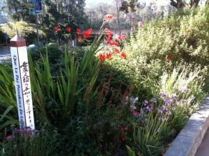 garden_peace_pole